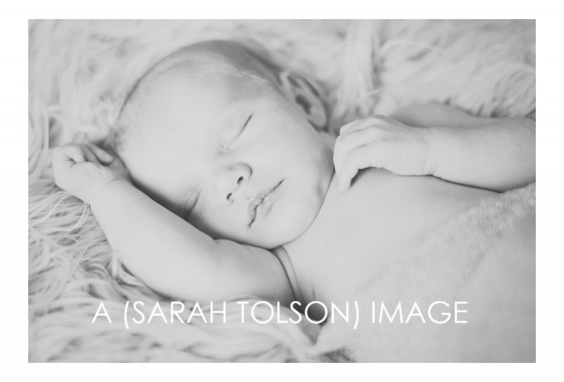 San Diego Newborn Photography by Sarah Tolson